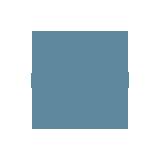 WordPress šablonų ir įskiepių programavimas